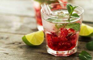 Berry Kanji Instant Recipe in Hindi